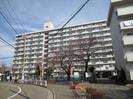 下平間住宅鹿島田グリ-ンハイツ2(809)の外観