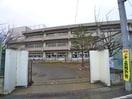 南行徳小学校(小学校)まで482m