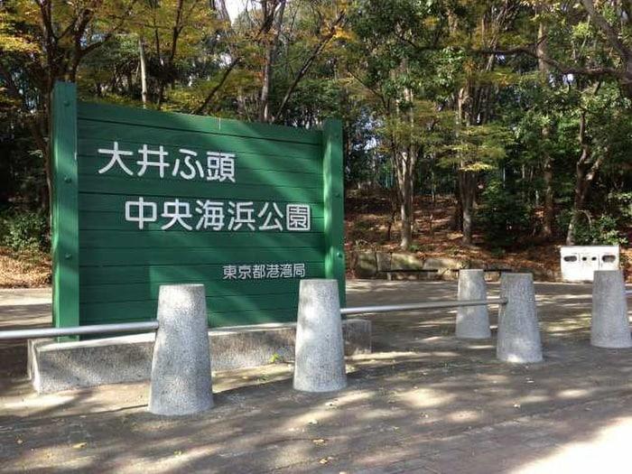 大井ふ頭中央海浜公園(公園)まで900m