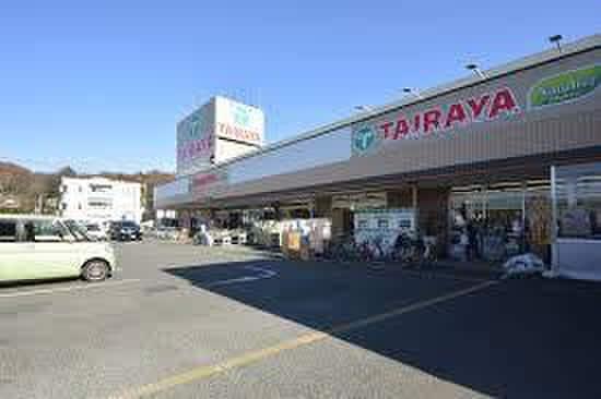 TAIRAYA奈良橋店(スーパー)まで1100m