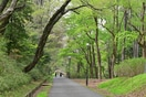都立狭山公園(公園)まで370m
