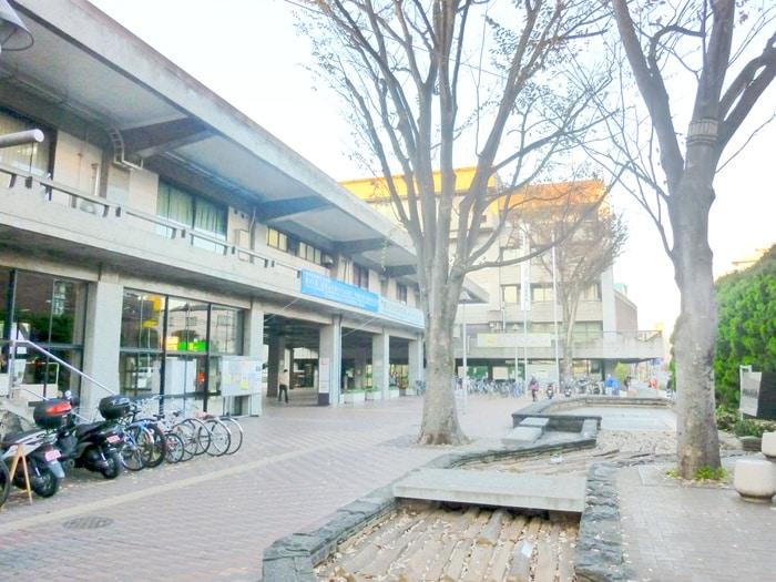 世田谷区役所(役所)まで207m