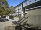 鎌倉女子大学(大学/短大/専門学校)まで1180m