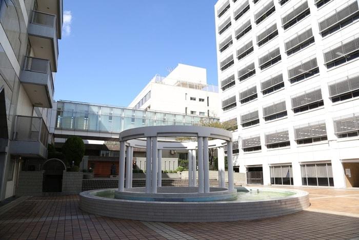 東京女子医科大学(大学/短大/専門学校)まで1297m