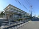 三郷中央総合病院(病院)まで520m
