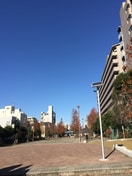大横川親水公園(公園)まで254m
