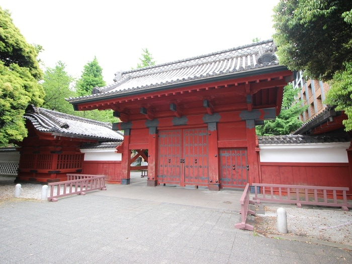 東京大学赤門(大学/短大/専門学校)まで714m