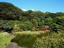 小石川植物園(公園)まで341m