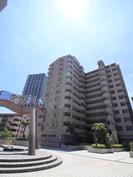 リバ-シティ21イ-ストタワ-ズ6号棟の外観