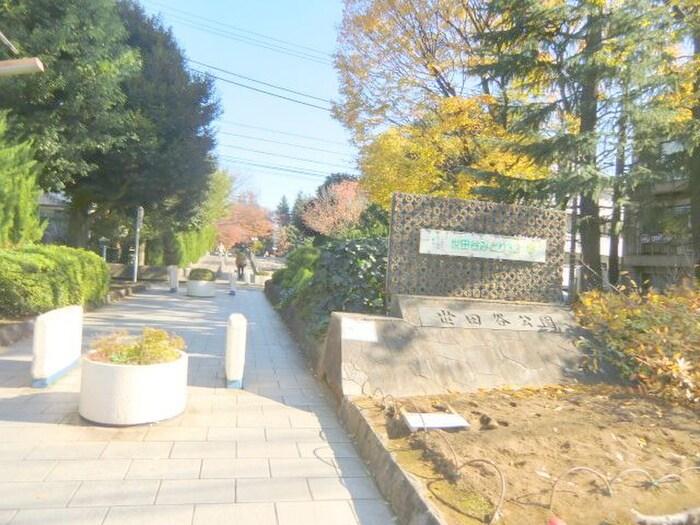 世田谷公園(公園)まで648m