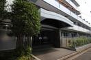 武蔵野パ-クマンション(206)の外観
