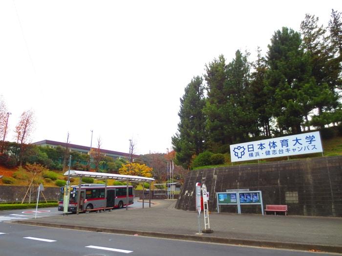 日本体育大学(大学/短大/専門学校)まで3600m