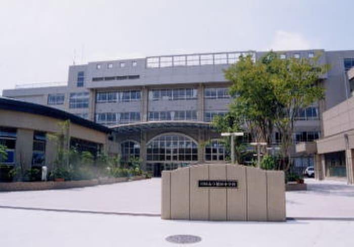 川崎市立稲田小学校(小学校)まで210m