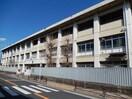 川崎市立稲田中学校(中学校/中等教育学校)まで1000m