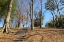 中川八幡山公園(公園)まで451m
