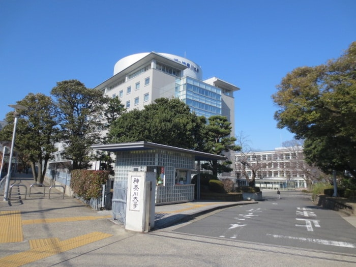 神奈川大学(大学/短大/専門学校)まで1390m