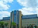 青山学院大学(大学/短大/専門学校)まで1100m