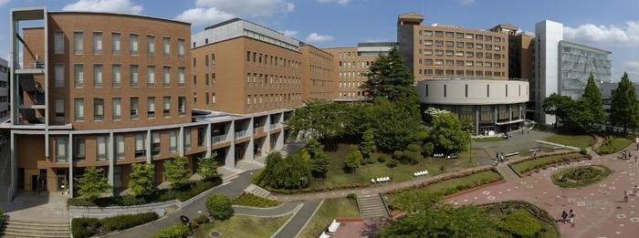 桜美林大学(大学/短大/専門学校)まで1500m