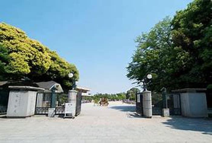 馬事公苑前緑地(公園)まで319m