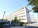 新桜ケ丘ハイツ3号棟(509)の外観