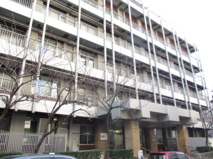 日本大学(大学/短大/専門学校)まで324m