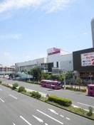 イオン(ショッピングセンター/アウトレットモール)まで210m