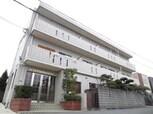HAYASHI HAITSU