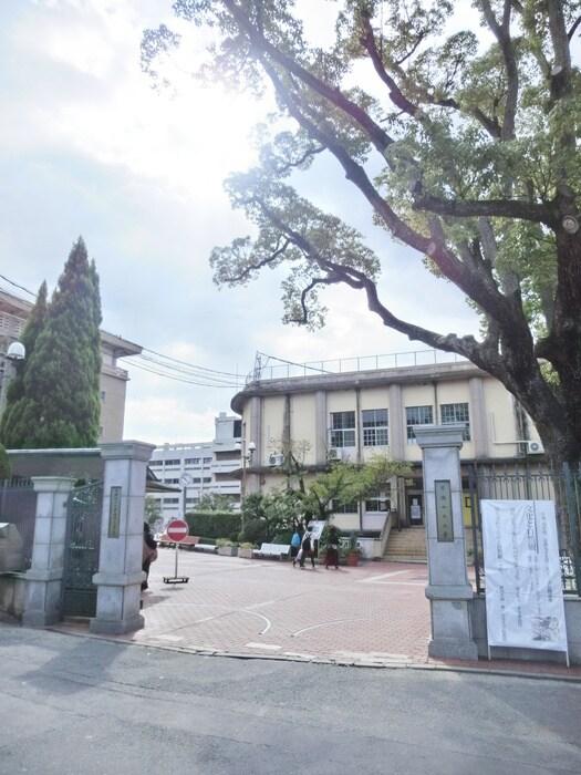 京都女子大学(大学/短大/専門学校)まで1435m