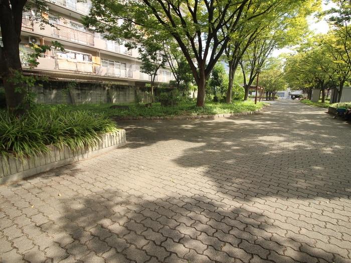 中津中央公園(公園)まで150m