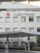 大阪赤十字病院(病院)まで313m