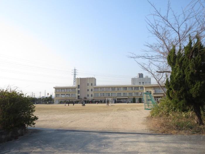 安倉小学校(小学校)まで973m