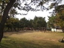 舞子公園(公園)まで100m