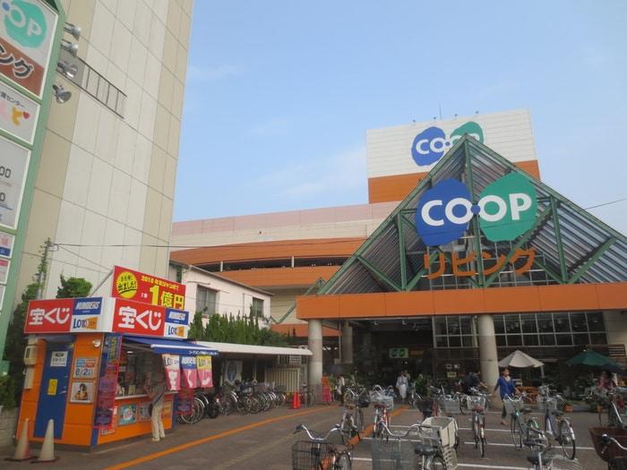 コープリビング(電気量販店/ホームセンター)まで1050m
