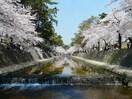 夙川公園(公園)まで150m