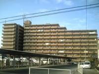 ライオンズマンション和泉上町(209)