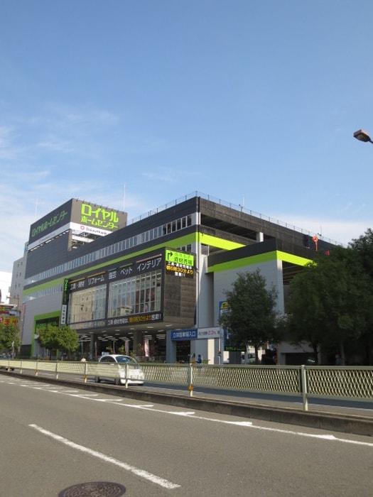 ロイヤルホームセンター(電気量販店/ホームセンター)まで702m