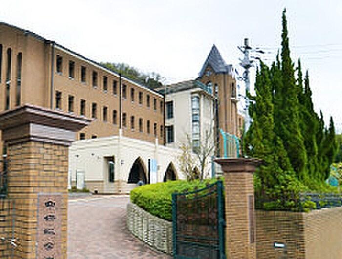 短大(大学/短大/専門学校)まで400m