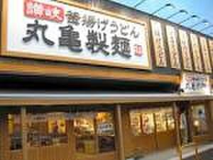 丸亀製麺(その他飲食(ファミレスなど))まで260m