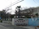 宮川幼稚園(幼稚園/保育園)まで142m