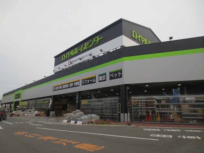 ロイヤルホームセンター(電気量販店/ホームセンター)まで900m