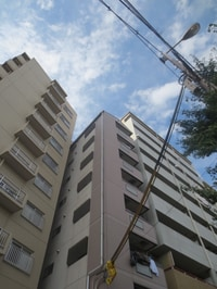 ハイグレート本田