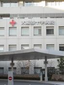 大阪赤十字病院(病院)まで537m