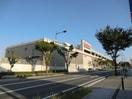 コストコ(ショッピングセンター/アウトレットモール)まで386m