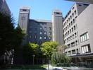 池坊短期大学(大学/短大/専門学校)まで350m
