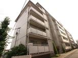 コスモハイツ池田B棟(103)