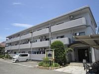 ファミ-ル上小阪