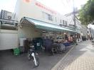 サンプラザ本店(スーパー)まで322m