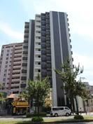 レオンコンフォート上本町(603)の外観