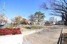 中之町公園(公園)まで350m
