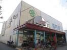ライフ茨田大宮店(スーパー)まで1300m